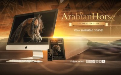 Interview with a breeder – Arabian Horse Magazine
